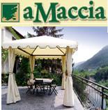 Agriturismo Amaccia - Imperia - Liguria