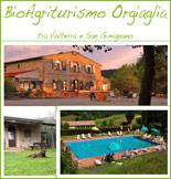 Bioagriturismo Orgiaglia - Pisa